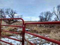 Red Fence, Wind Turbine