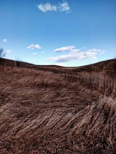 Edit prairie
