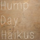 hump day haikus 3